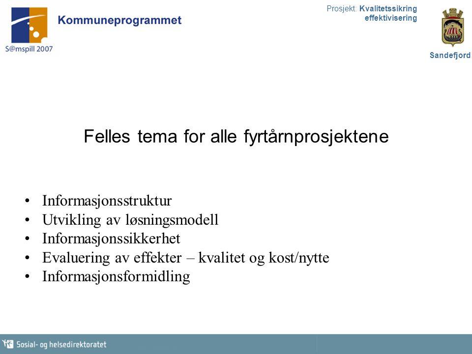 Prosjekt: Kvalitetssikring effektivisering Sandefjord Felles tema for alle fyrtårnprosjektene Informasjonsstruktur Utvikling av løsningsmodell Informa
