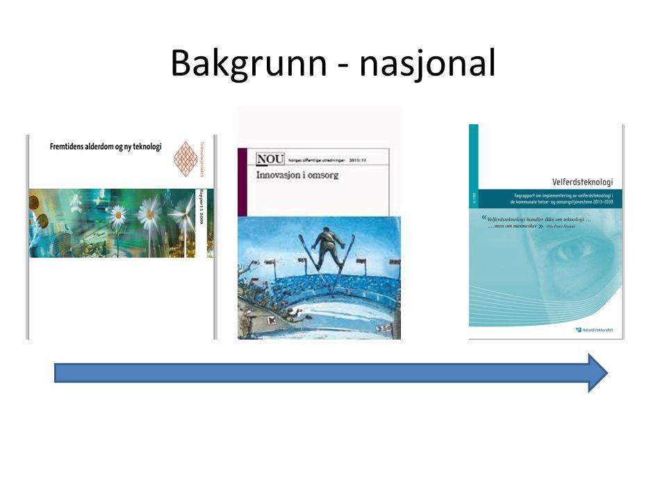 Bakgrunn - nasjonal