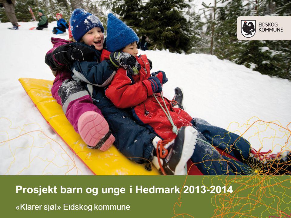 «Klarer sjøl» Eidskog kommune Prosjekt barn og unge i Hedmark 2013-2014
