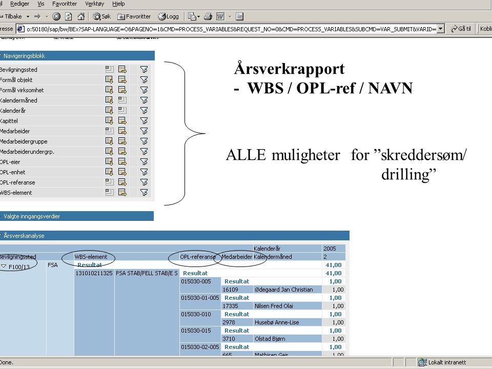 """Årsverkrapport - WBS / OPL-ref / NAVN ALLE muligheter for """"skreddersøm/ drilling"""""""