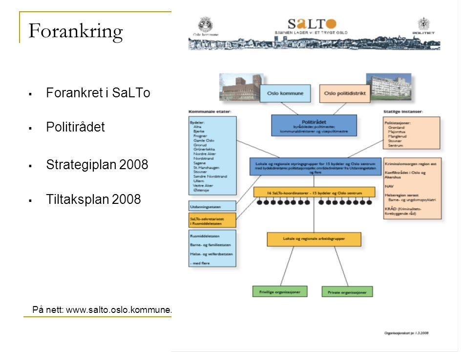 2 Forankring  Forankret i SaLTo  Politirådet  Strategiplan 2008  Tiltaksplan 2008 På nett: www.salto.oslo.kommune.no