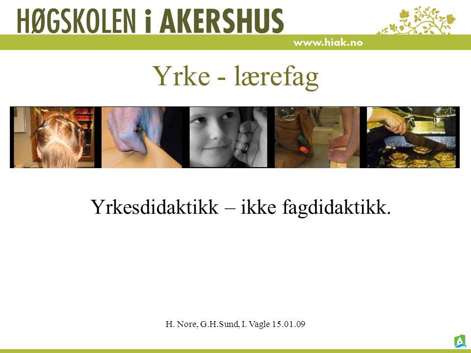 H. Nore, G.H.Sund, I. Vagle 15.01.09 Yrke - lærefag Yrkesdidaktikk – ikke fagdidaktikk.