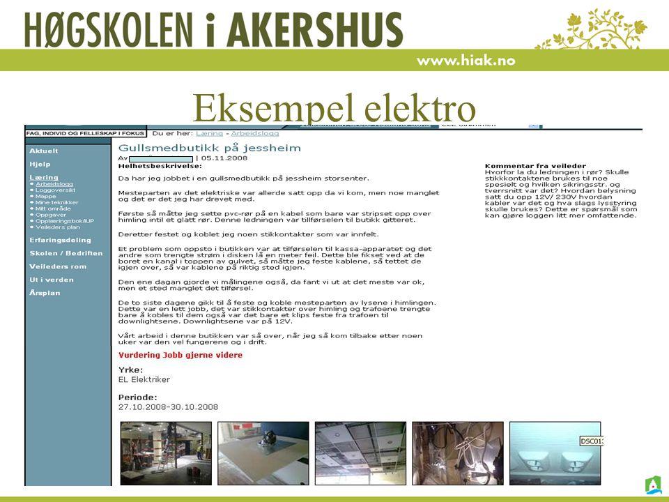H. Nore, G.H.Sund, I. Vagle 15.01.09 Eksempel elektro