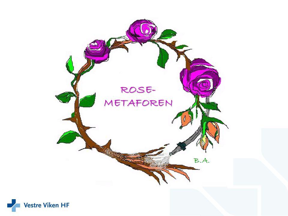 ROSE- METAFOREN B.A.