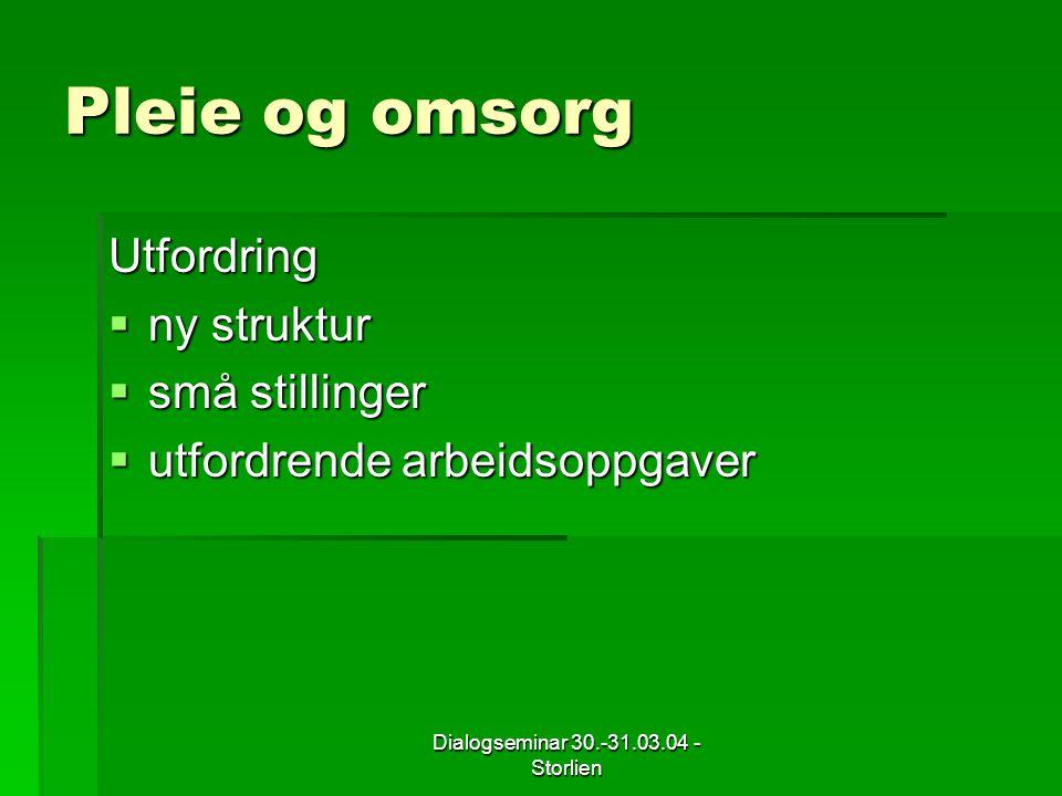 Dialogseminar 30.-31.03.04 - Storlien Pleie og omsorg Utfordring  ny struktur  små stillinger  utfordrende arbeidsoppgaver