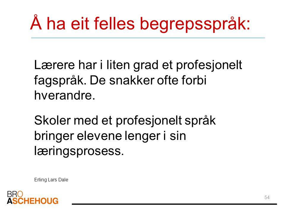 54 Å ha eit felles begrepsspråk: Lærere har i liten grad et profesjonelt fagspråk. De snakker ofte forbi hverandre. Skoler med et profesjonelt språk b
