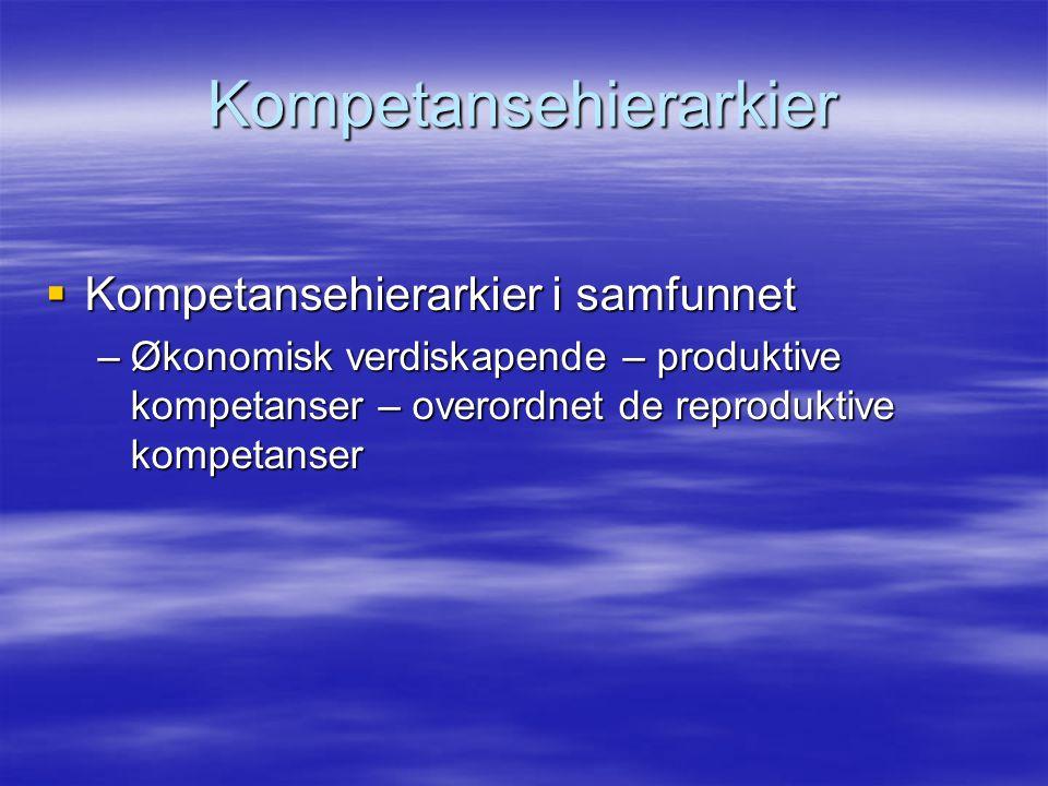 Kompetansehierarkier  Kompetansehierarkier i samfunnet –Økonomisk verdiskapende – produktive kompetanser – overordnet de reproduktive kompetanser