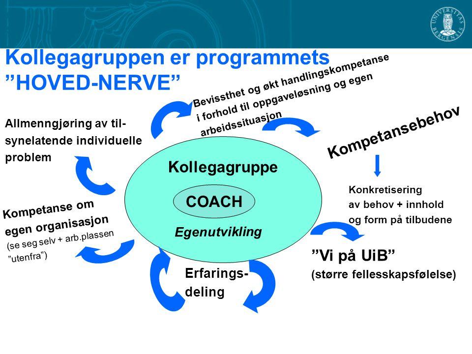 """Kollegagruppen er programmets """"HOVED-NERVE"""" Kollegagruppe COACH Kompetansebehov Egenutvikling Konkretisering av behov + innhold og form på tilbudene """""""
