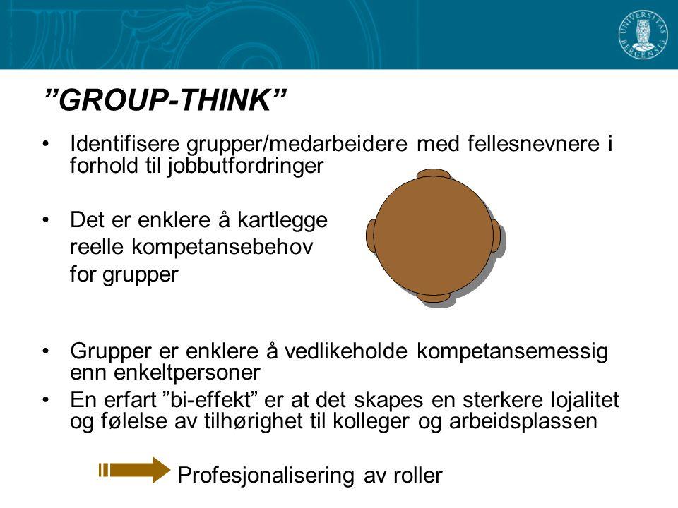 """""""GROUP-THINK"""" Identifisere grupper/medarbeidere med fellesnevnere i forhold til jobbutfordringer Det er enklere å kartlegge reelle kompetansebehov for"""