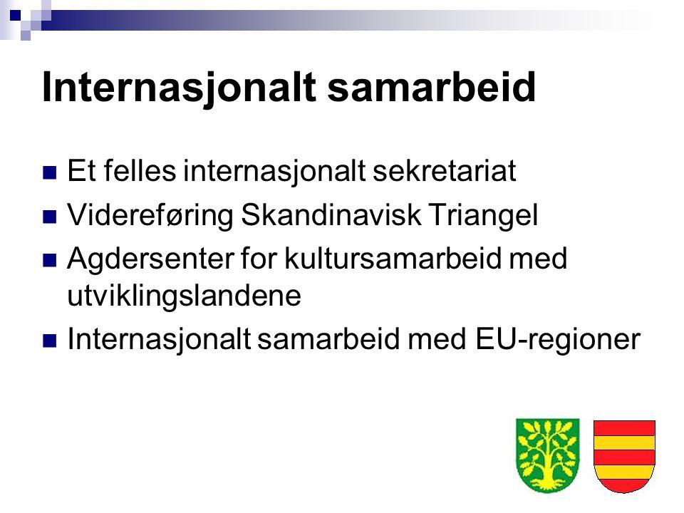 Internasjonalt samarbeid Et felles internasjonalt sekretariat Videreføring Skandinavisk Triangel Agdersenter for kultursamarbeid med utviklingslandene