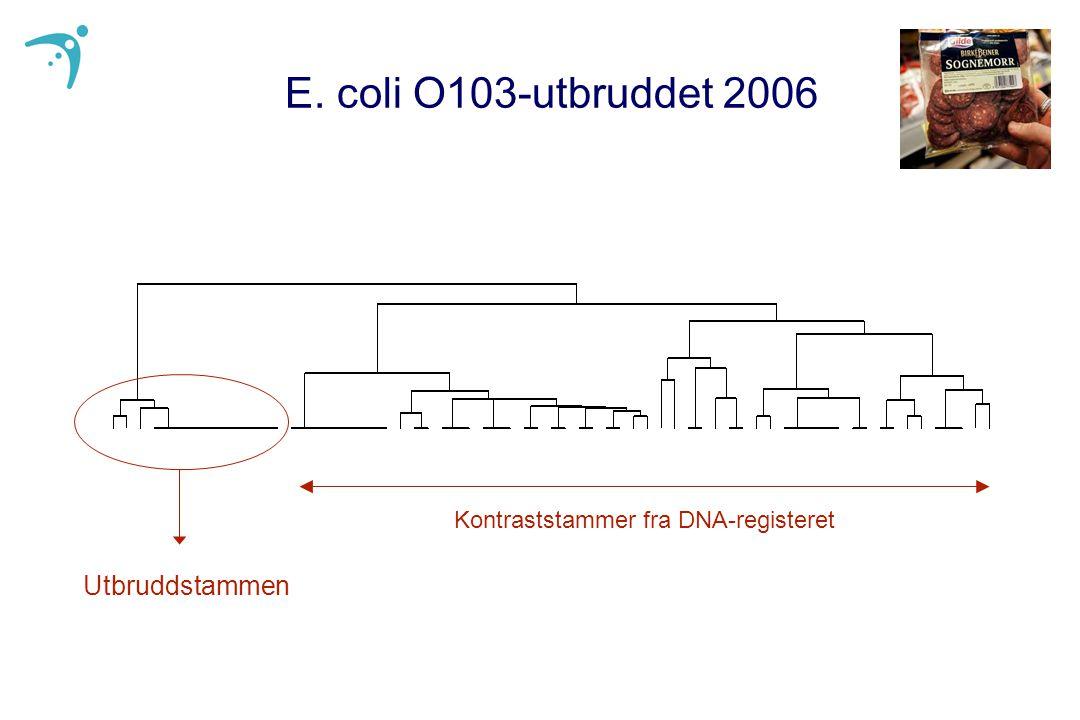 E. coli O103-utbruddet 2006 Utbruddstammen Kontraststammer fra DNA-registeret