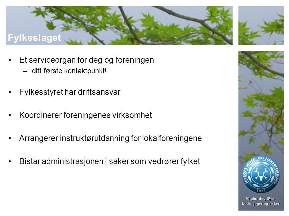 8 Fylkeslaget Alle NJFFs foreninger i et fylke, utgjør fylkeslaget Egen juridisk enhet Styret velges av fylkeslagets årsmøte Hvert 3.