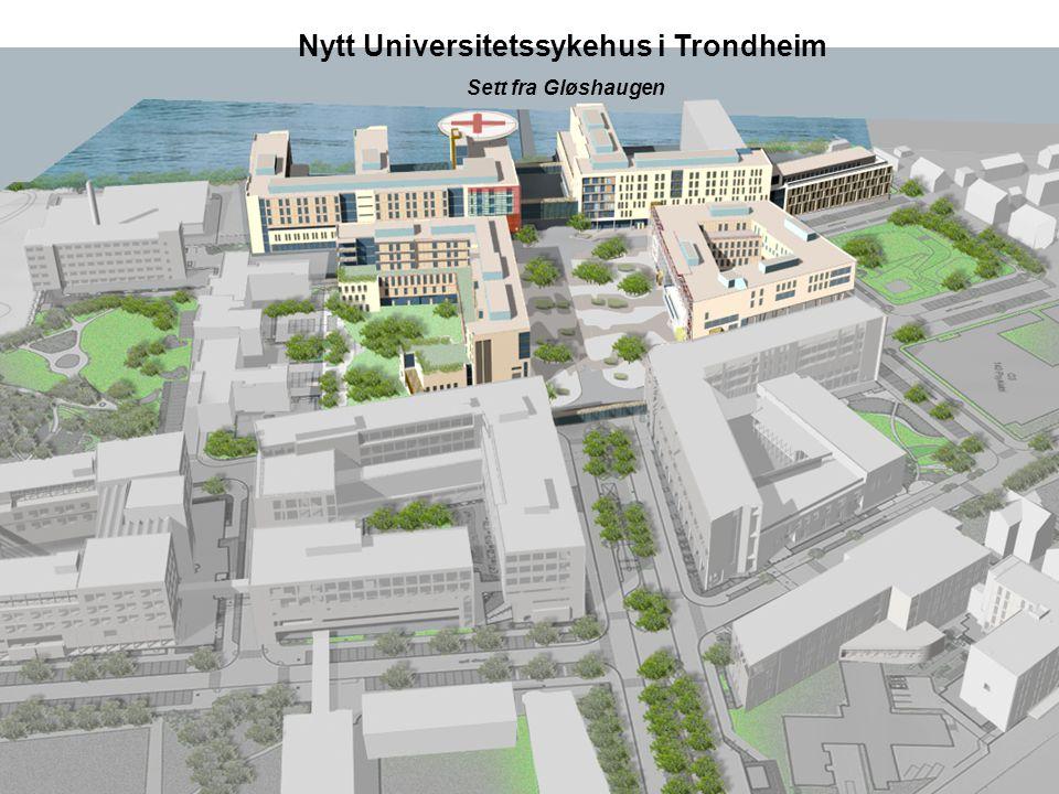 Nytt Universitetssykehus i Trondheim Sett fra Gløshaugen