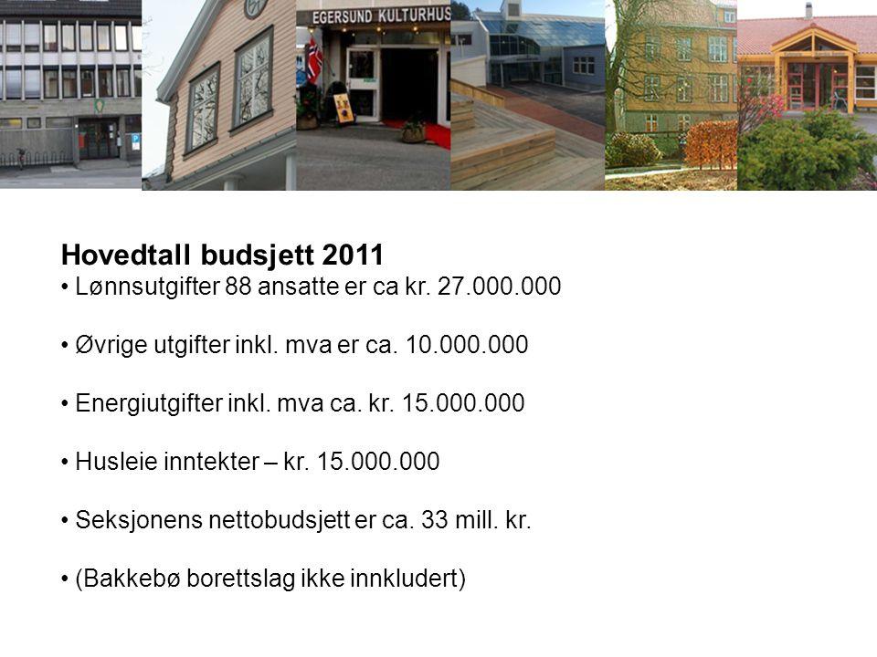 Hovedtall budsjett 2011 Lønnsutgifter 88 ansatte er ca kr. 27.000.000 Øvrige utgifter inkl. mva er ca. 10.000.000 Energiutgifter inkl. mva ca. kr. 15.