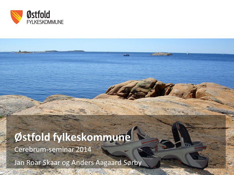 Østfold fylkeskommune Cerebrum-seminar 2014 Jan Roar Skaar og Anders Aagaard Sørby