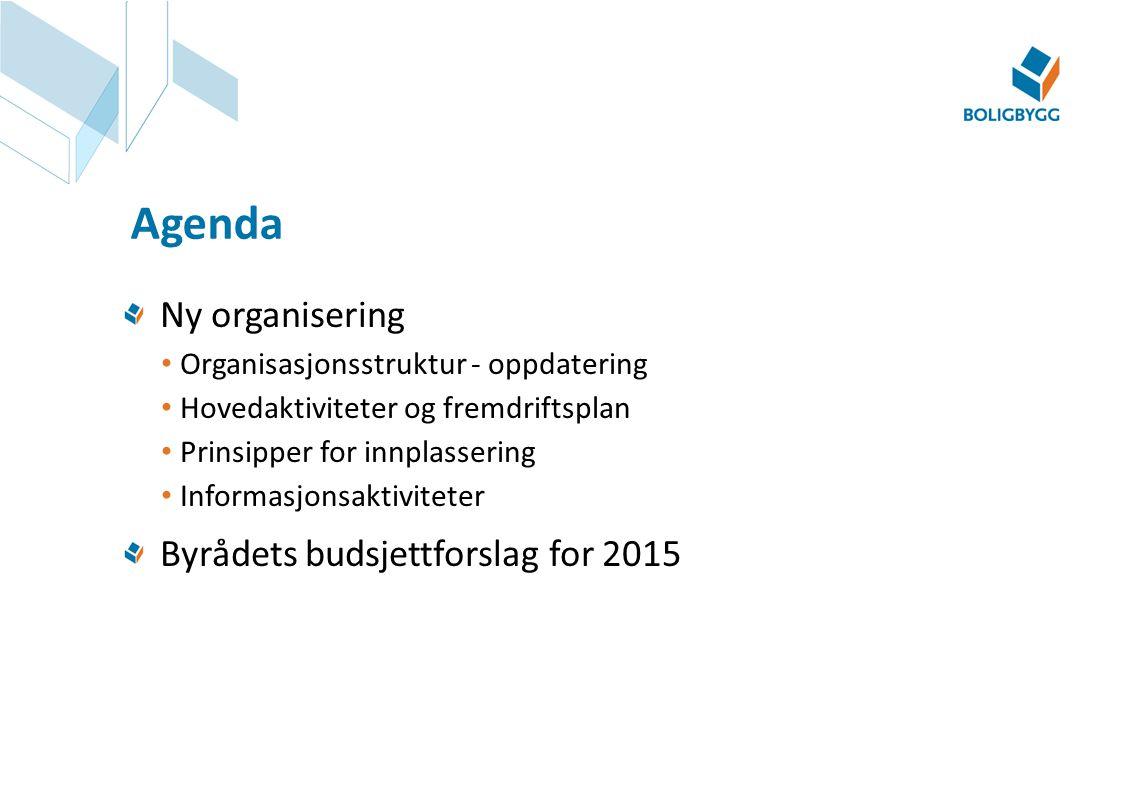 Ny organisering Organisasjonsstruktur - oppdatering Hovedaktiviteter og fremdriftsplan Prinsipper for innplassering Informasjonsaktiviteter Byrådets b