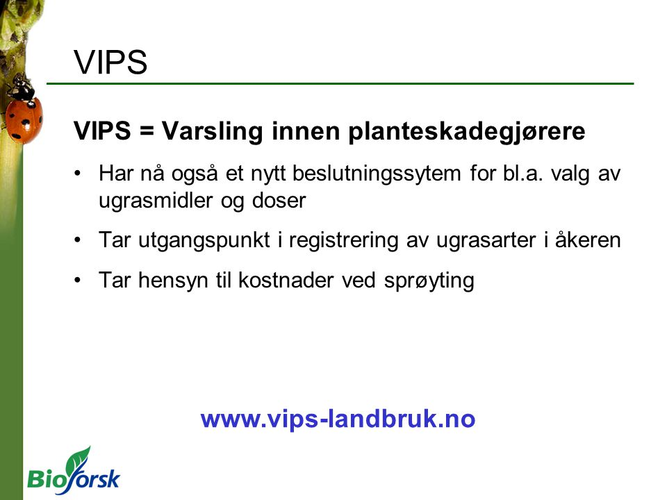 VIPS VIPS = Varsling innen planteskadegjørere Har nå også et nytt beslutningssytem for bl.a. valg av ugrasmidler og doser Tar utgangspunkt i registrer