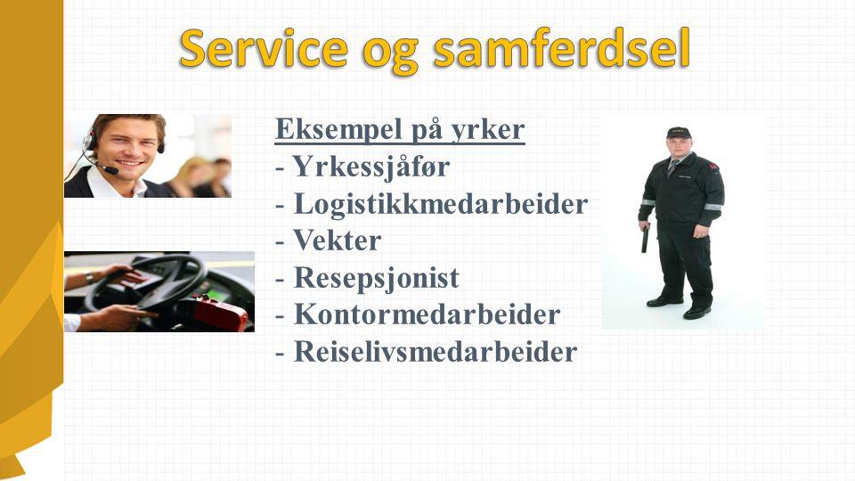 Eksempel på yrker - Yrkessjåfør - Logistikkmedarbeider - Vekter - Resepsjonist - Kontormedarbeider - Reiselivsmedarbeider