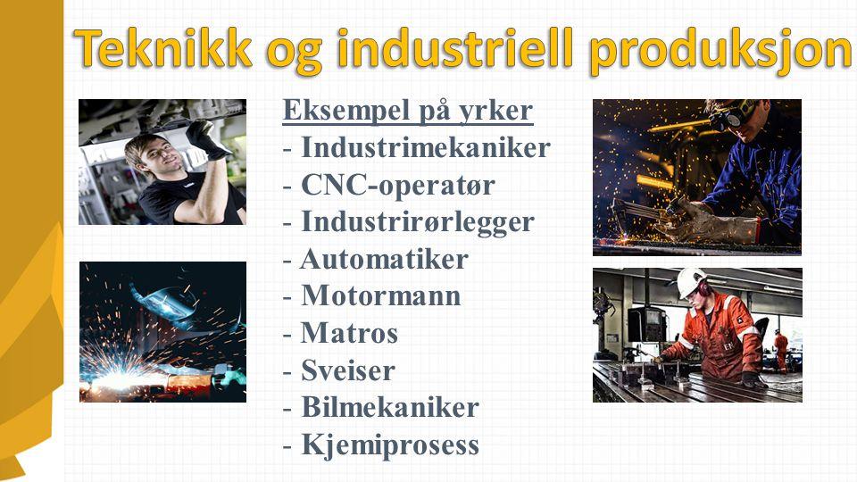 Eksempel på yrker - Industrimekaniker - CNC-operatør - Industrirørlegger - Automatiker - Motormann - Matros - Sveiser - Bilmekaniker - Kjemiprosess