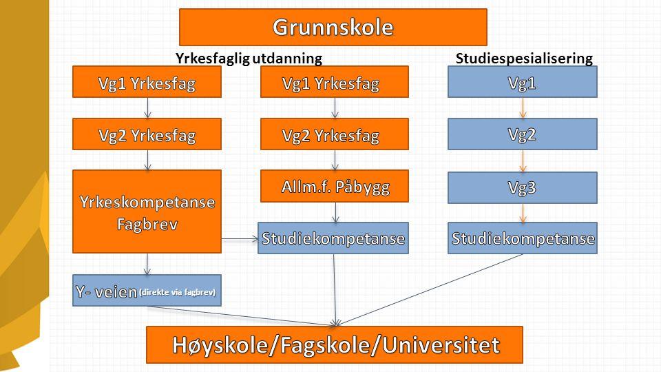 Yrkesfaglig utdanningStudiespesialisering (direkte via fagbrev)