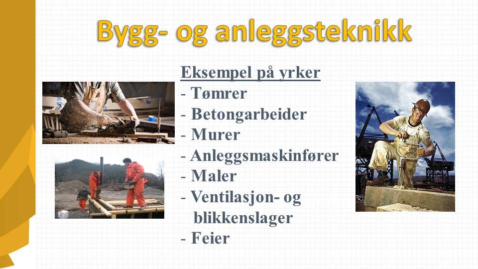 Eksempel på yrker - Tømrer - Betongarbeider - Murer - Anleggsmaskinfører - Maler - Ventilasjon- og blikkenslager - Feier