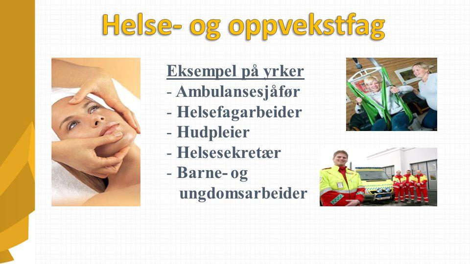 Eksempel på yrker - Ambulansesjåfør - Helsefagarbeider - Hudpleier - Helsesekretær - Barne- og ungdomsarbeider
