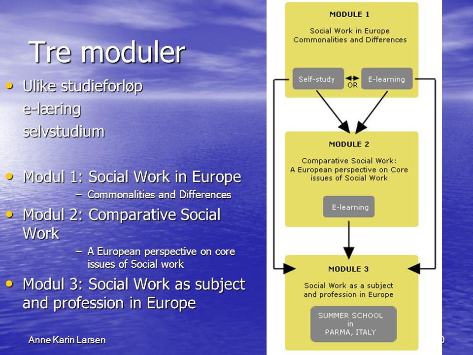 Anne Karin Larsen10 Tre moduler Ulike studieforløp Ulike studieforløpe-læringselvstudium Modul 1: Social Work in Europe Modul 1: Social Work in Europe