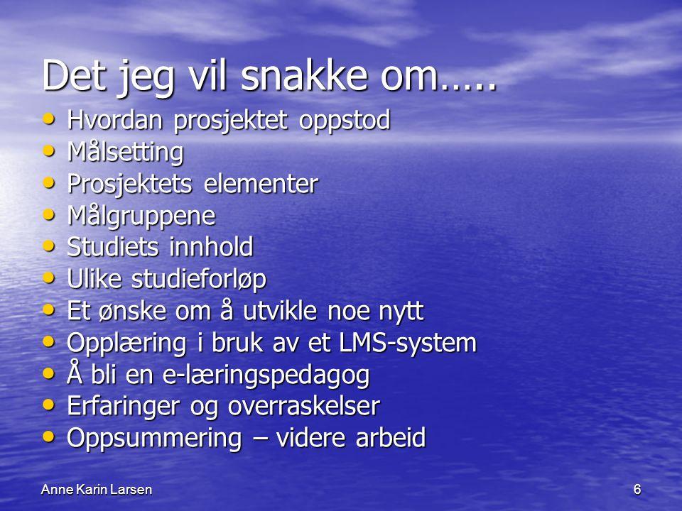 Anne Karin Larsen6 Det jeg vil snakke om…..