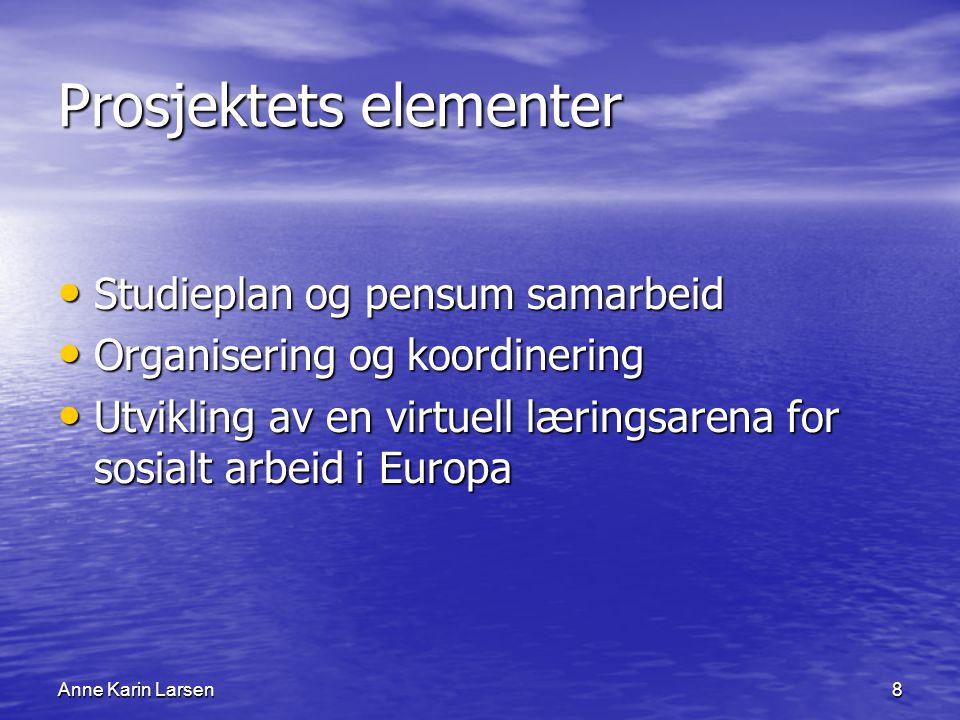 Anne Karin Larsen8 Prosjektets elementer Studieplan og pensum samarbeid Studieplan og pensum samarbeid Organisering og koordinering Organisering og koordinering Utvikling av en virtuell læringsarena for sosialt arbeid i Europa Utvikling av en virtuell læringsarena for sosialt arbeid i Europa