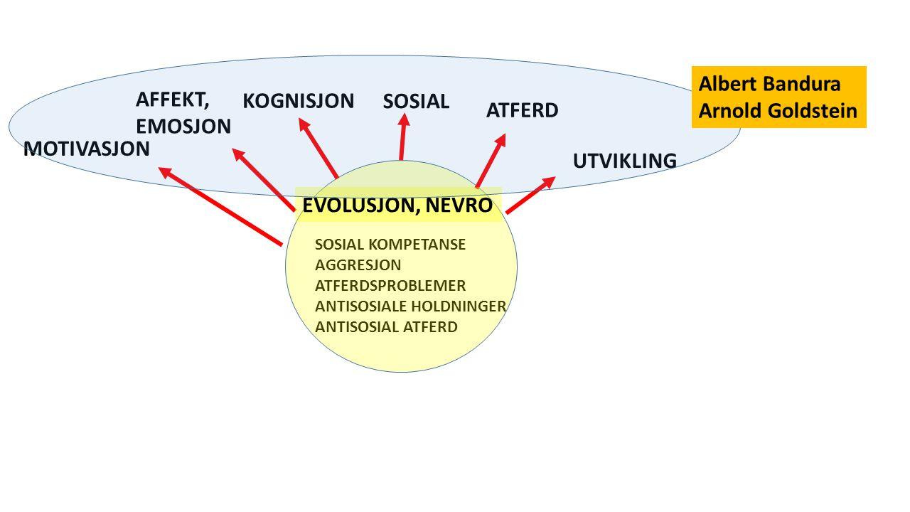 SOSIAL KOMPETANSE AGGRESJON ATFERDSPROBLEMER ANTISOSIALE HOLDNINGER ANTISOSIAL ATFERD ATFERD KOGNISJON SOSIAL AFFEKT, EMOSJON MOTIVASJON EVOLUSJON, NEVRO UTVIKLING Albert Bandura Arnold Goldstein
