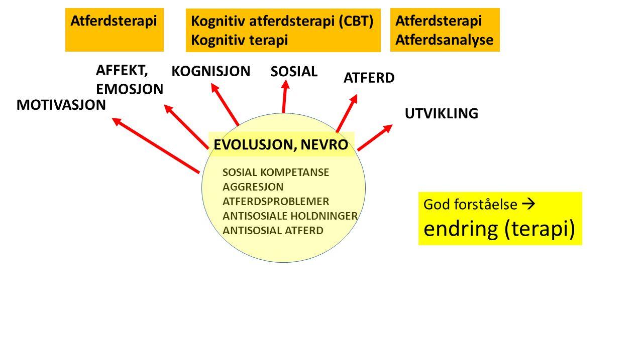 SOSIAL KOMPETANSE AGGRESJON ATFERDSPROBLEMER ANTISOSIALE HOLDNINGER ANTISOSIAL ATFERD ATFERD KOGNISJON SOSIAL AFFEKT, EMOSJON MOTIVASJON EVOLUSJON, NEVRO UTVIKLING God forståelse  endring (terapi) Atferdsterapi Atferdsanalyse Kognitiv atferdsterapi (CBT) Kognitiv terapi Atferdsterapi