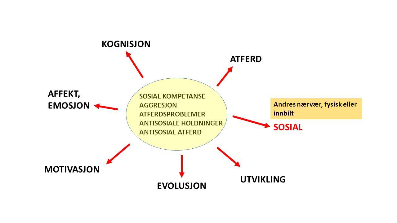 SOSIAL KOMPETANSE AGGRESJON ATFERDSPROBLEMER ANTISOSIALE HOLDNINGER ANTISOSIAL ATFERD ATFERD KOGNISJON SOSIAL AFFEKT, EMOSJON MOTIVASJON EVOLUSJON UTVIKLING Andres nærvær, fysisk eller innbilt