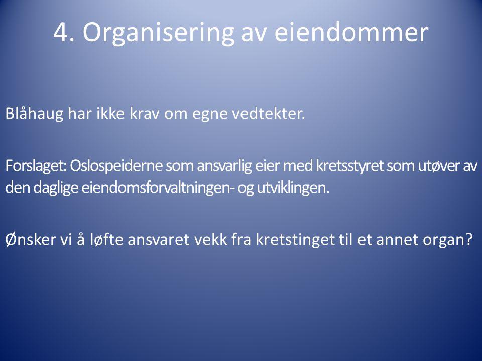 4. Organisering av eiendommer Blåhaug har ikke krav om egne vedtekter.