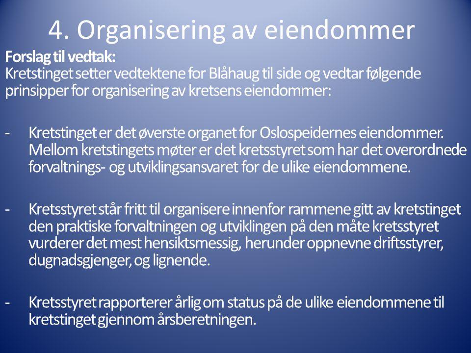 4. Organisering av eiendommer Forslag til vedtak: Kretstinget setter vedtektene for Blåhaug til side og vedtar følgende prinsipper for organisering av