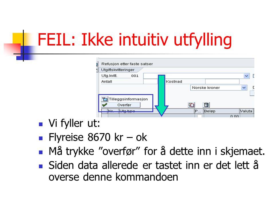 """FEIL: Ikke intuitiv utfylling Vi fyller ut: Flyreise 8670 kr – ok Må trykke """"overfør"""" for å dette inn i skjemaet. Siden data allerede er tastet inn er"""