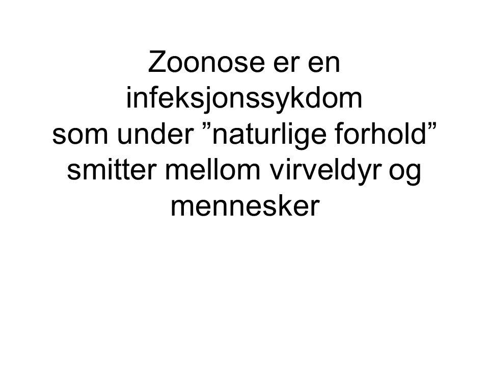 """Zoonose er en infeksjonssykdom som under """"naturlige forhold"""" smitter mellom virveldyr og mennesker"""