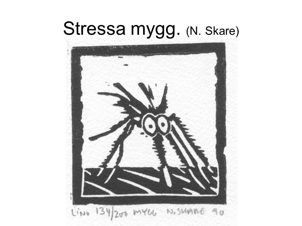 Stressa mygg. (N. Skare)