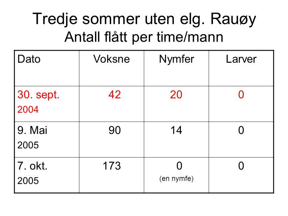 Tredje sommer uten elg. Rauøy Antall flått per time/mann DatoVoksneNymferLarver 30. sept. 2004 42200 9. Mai 2005 90140 7. okt. 2005 173 0 (en nymfe) 0