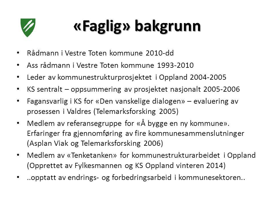 Rådmann i Vestre Toten kommune 2010-dd Ass rådmann i Vestre Toten kommune 1993-2010 Leder av kommunestrukturprosjektet i Oppland 2004-2005 KS sentralt – oppsummering av prosjektet nasjonalt 2005-2006 Fagansvarlig i KS for «Den vanskelige dialogen» – evaluering av prosessen i Valdres (Telemarksforsking 2005) Medlem av referansegruppe for «Å bygge en ny kommune».