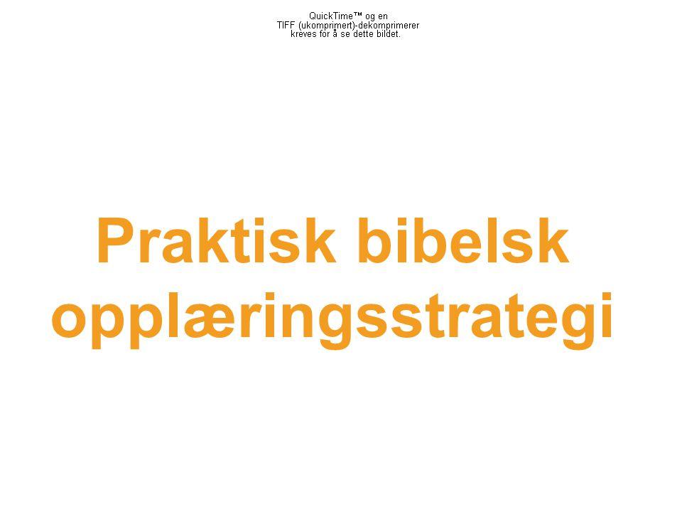 Praktisk bibelsk opplæringsstrategi