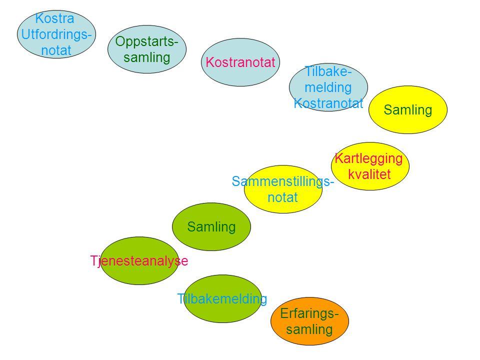 Kostra Utfordrings- notat Oppstarts- samling Kostranotat Samling Kartlegging kvalitet Sammenstillings- notat Samling Tjenesteanalyse Tilbakemelding Er
