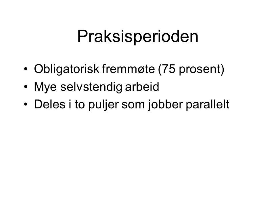 Praksisperioden Obligatorisk fremmøte (75 prosent) Mye selvstendig arbeid Deles i to puljer som jobber parallelt