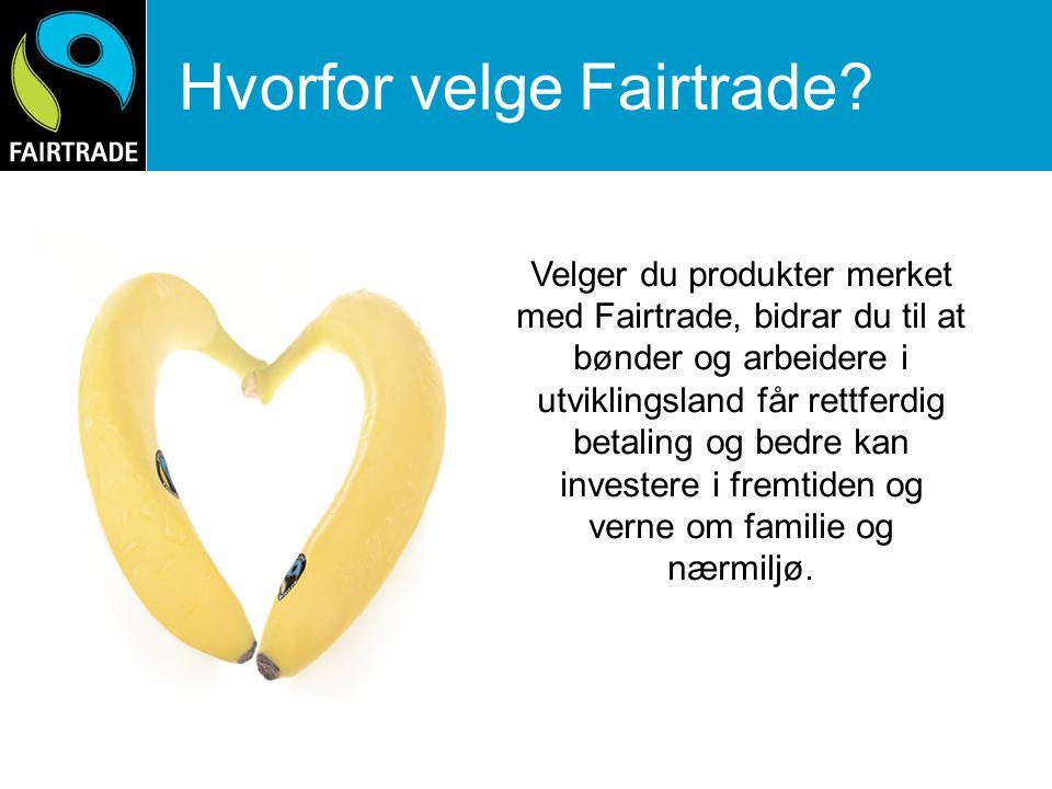 Markedsundersøkelse 2008 70 % merkekjennskap i Norge (DN) Høyest kjennskap i urbane strøk Kjennskap jevnt fordelt i aldersgruppen 16-44 år Forbrukerne ønsker seg - Hverdagsprodukter - Produkter som konkurrerer på kvalitet og smak - Kjente merkevarer merket med Fairtrade Research International mars 2008