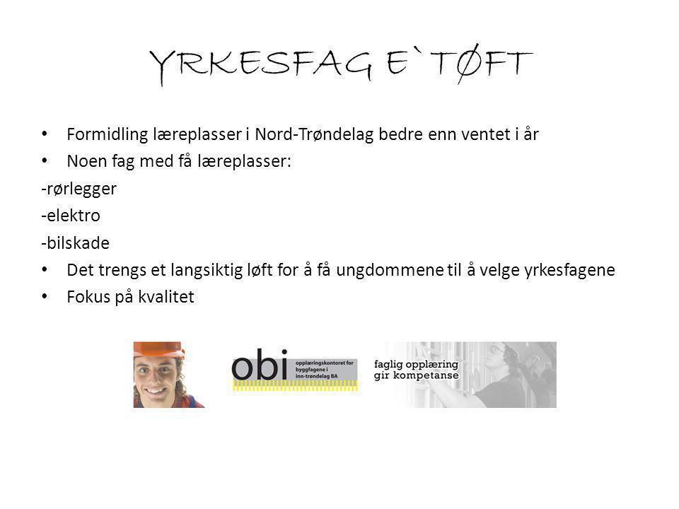 Formidling læreplasser i Nord-Trøndelag bedre enn ventet i år Noen fag med få læreplasser: -rørlegger -elektro -bilskade Det trengs et langsiktig løft for å få ungdommene til å velge yrkesfagene Fokus på kvalitet