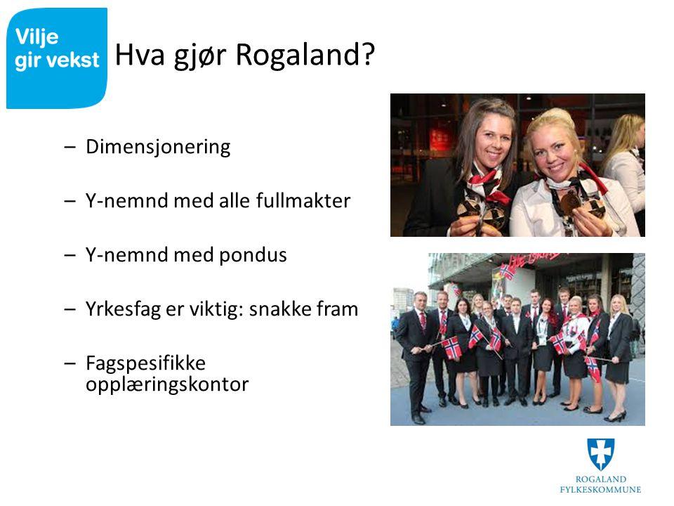 Hva gjør Rogaland? –Dimensjonering –Y-nemnd med alle fullmakter –Y-nemnd med pondus –Yrkesfag er viktig: snakke fram –Fagspesifikke opplæringskontor