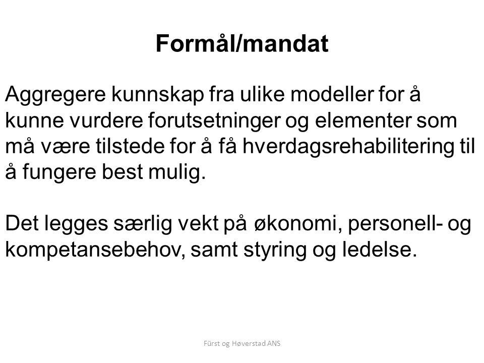 Fürst og Høverstad ANS Formål/mandat Aggregere kunnskap fra ulike modeller for å kunne vurdere forutsetninger og elementer som må være tilstede for å