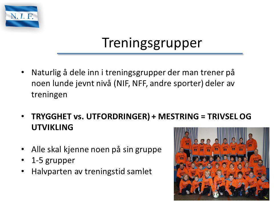 Treningsgrupper Naturlig å dele inn i treningsgrupper der man trener på noen lunde jevnt nivå (NIF, NFF, andre sporter) deler av treningen TRYGGHET vs.