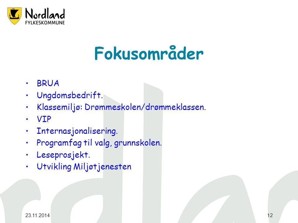23.11.201412 Fokusområder BRUA Ungdomsbedrift. Klassemiljø: Drømmeskolen/drømmeklassen.