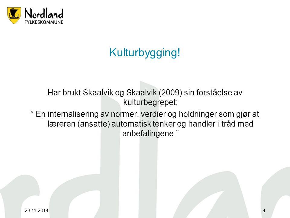 23.11.2014 Kulturbygging.