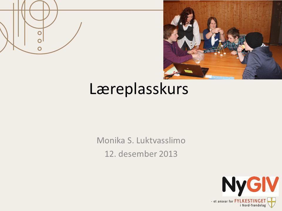 Læreplasskurs Monika S. Luktvasslimo 12. desember 2013